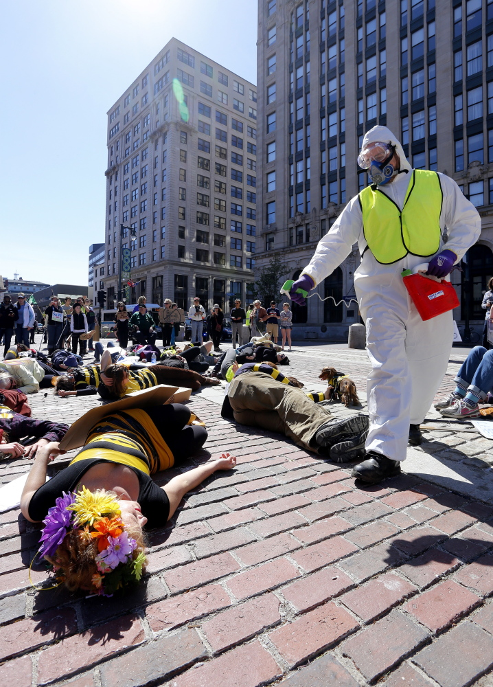 "Demonstrators dressed as bees participate in a ""die in"" at Monument Square as part of the March Against Monsanto, which produces GMO seeds and herbicides linked to their growth. Some activists relate declines in bee and butterfly populations to herbicide use."
