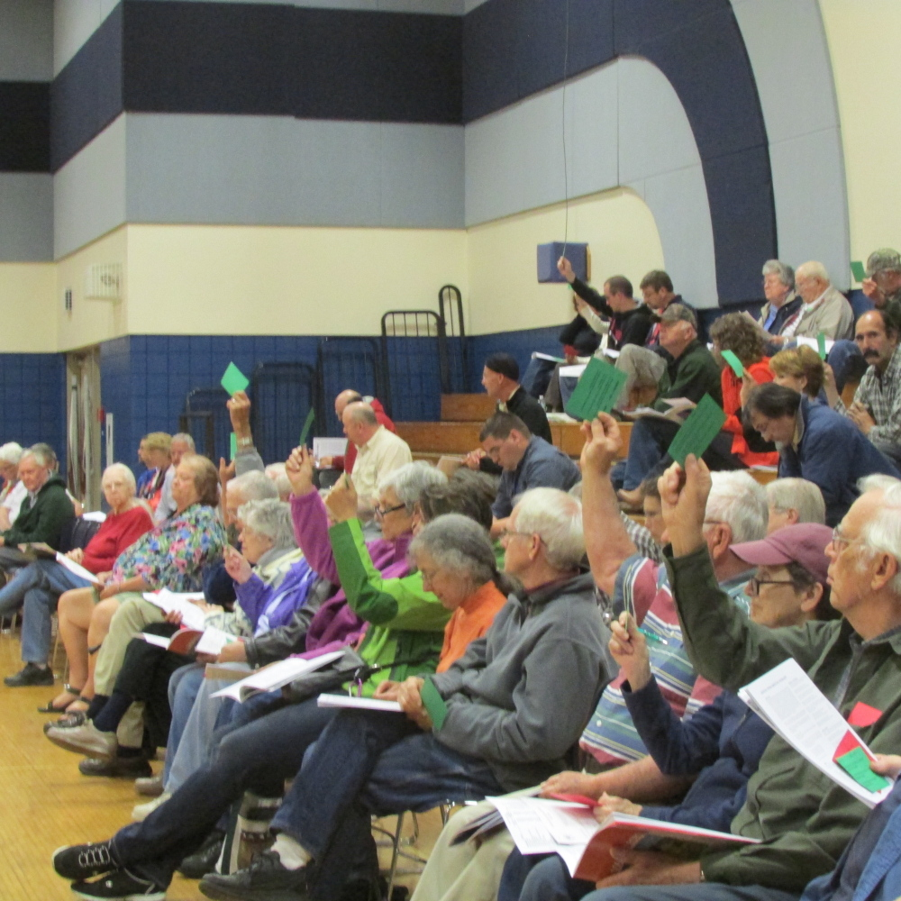 Vassalboro residents vote to approve a budget article at the annual town meeting at Vassalboro Community School on Monday evening.