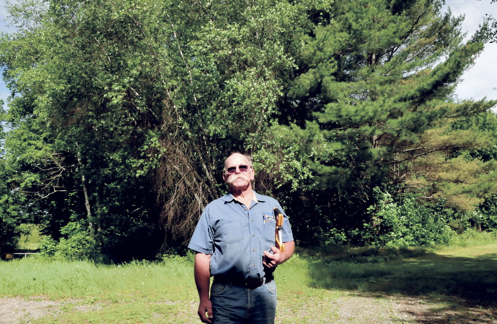 John Webster stands on Wednesday in a wooded section off Davis Farm Road in Solon, where he plans to build his Enviro Wood Briquette company, which will manufacture wood bricks to heat homes.