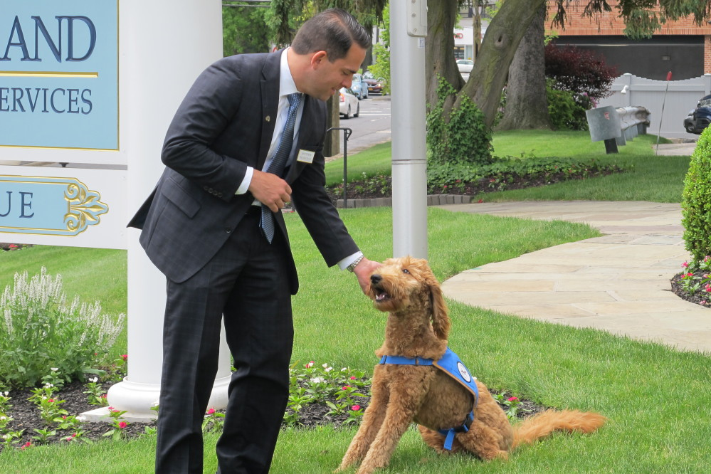 Matthew Fiorillo, owner of the Ballard-Durand funeral home in White Plains, N.Y., plays with his dog Lulu on the funeral home's lawn on Thursday.
