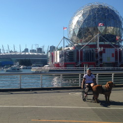 Christy Gardner and her service dog Moxie recently watched as the United States women's soccer team defeated Germany 2-1 in the World Cup semifinals in Montreal. Gardner then hopped a plane to Vancouver where she will witness the final between the Americans and Japan today.