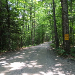 A proposed summer camp for foster children on about 68 acres down the private Beaver Brook Estates road on the shore of Long Pond in Rome is getting opposition from neighbors. The land also has frontage on Beaver Brook, which runs next to this road.