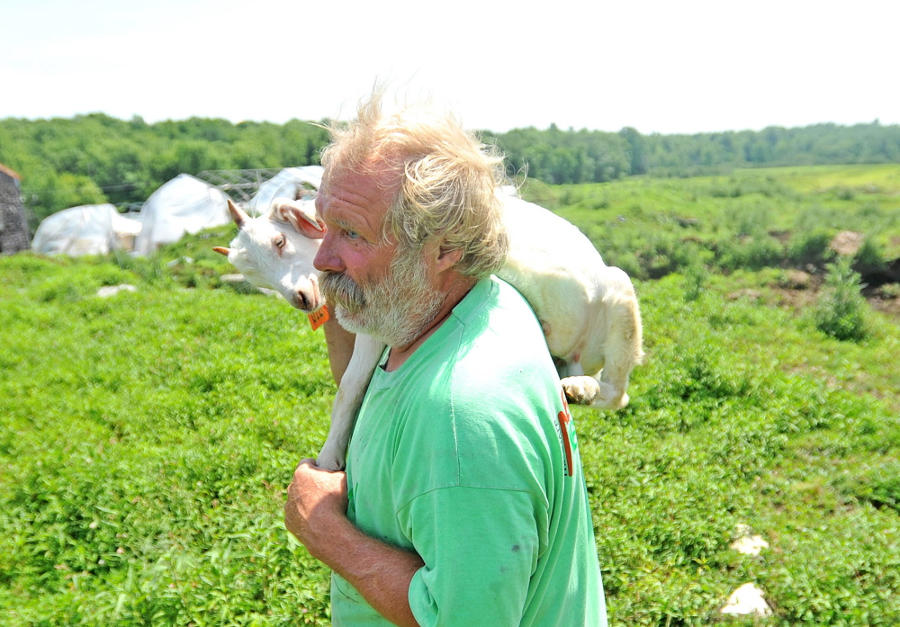 Mark Gould carries a wayward goat back to the stables at his farm in Sidney last July. Gould's goats escaped the farm several days in a row onto Interstate 95. A year later, more than two dozen animals have been seized from the farm.