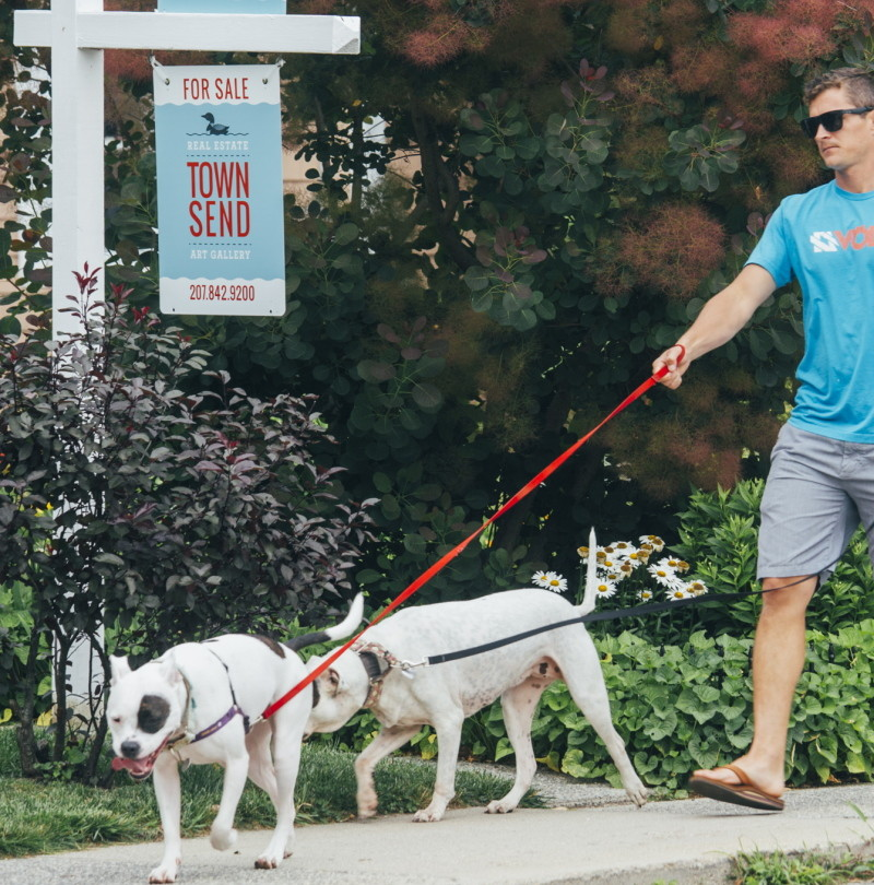 Ryan Dunstan walks his dogs in Willard Square in South Portland on Tuesday. Maine home sales surged in June compared with a year earlier.