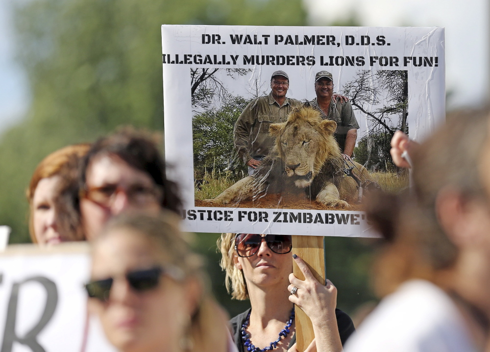 People rally outside the River Bluff Dental clinic in Bloomington, Minn., to protest the illegal killing of a rare lion in Zimbabwe by dentist and hunter Walter Palmer.