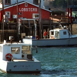 In this 1997 file photo Friday lobstermen work on their boat  at Cook's Lobster House on Bailey Island. Press Herald file photo