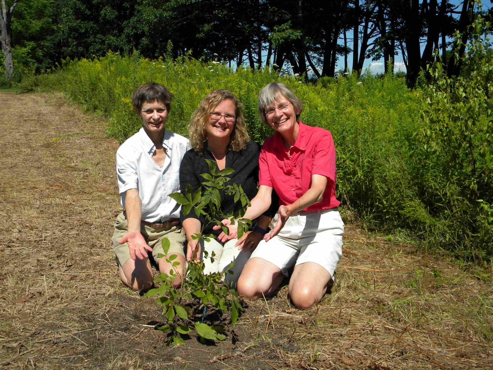 Contributed photoß∑ From left, are Dorcas Miller, Andria Lani and Cheryl Ring seated behind one of two smooth bark hickory trees the 2015 Master Naturalist class gifted to the Viles Arboretum.