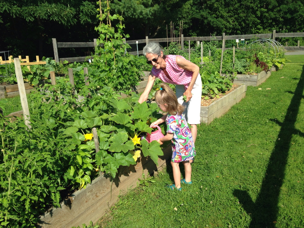 Penny Megan, left, waters one of the gardens recently at North Street community gardens in Waterville with Chryl Cayer.