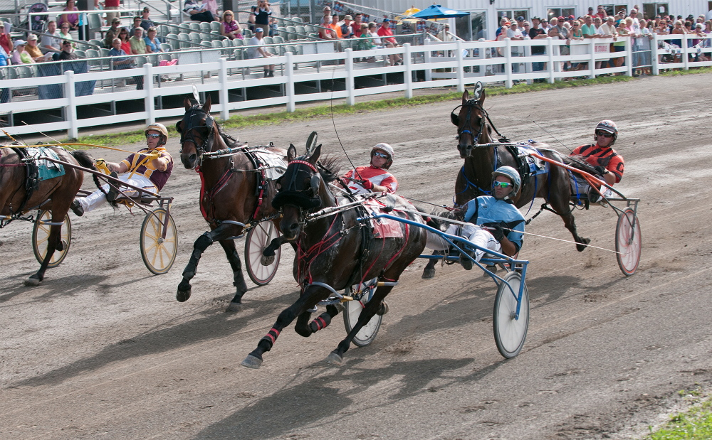 Kevin Bennett photo   Four of the five horses in the Walter H. Hight Invitational cross the start line on Saturday at the Skowhegan Fairgrounds. Heath Campbell riding Wheelaway won the race.