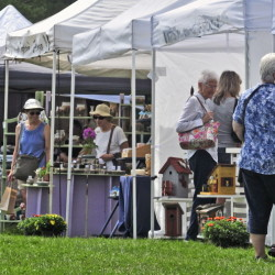 Customers browse booths Saturday during the Designing Women show at Longfellow's Greenhouses in Manchester. The event was a fundraiser for the Sexual Assault Crisis and Support Center.