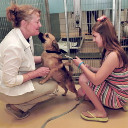 Humane Society Waterville Area Operations Director Lisa Smith gets some affection from a dog that Kaysa Salisbury is interested in adopting. The shelter has seen an uptick in pet adoptions since upping its Facebook effort.