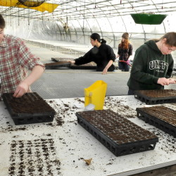 Unity College students work in a greenhouse planting vegetable seeds at the school's McKay Farm and Research Station in Thorndike in February. The farm is among the 44,000-square feet of buidlings the college has added since 2013. It welcomes its largest ever freshmen class this week.