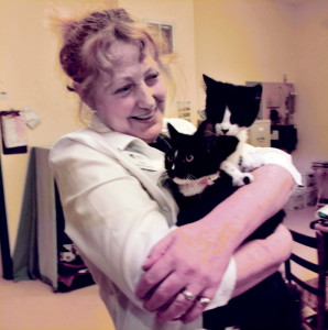 Humane Society Waterville Area Operations Director Lisa Smith has her hands full with kittens at the facility on Tuesday. The animal shelter is finding a lot of success with adoptions, donations and other positive interaction since it increased its Facebook presence.
