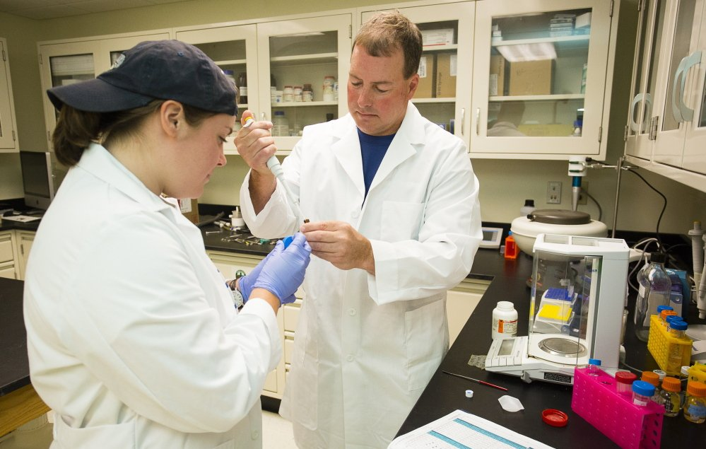 UNE professor of pharmacology Edward Bilsky, a veteran researcher of opiates and chronic pain management, and graduate student Kayla Lindros work on identifying drug compounds that would reduce pain without being addictive like OxyContin.