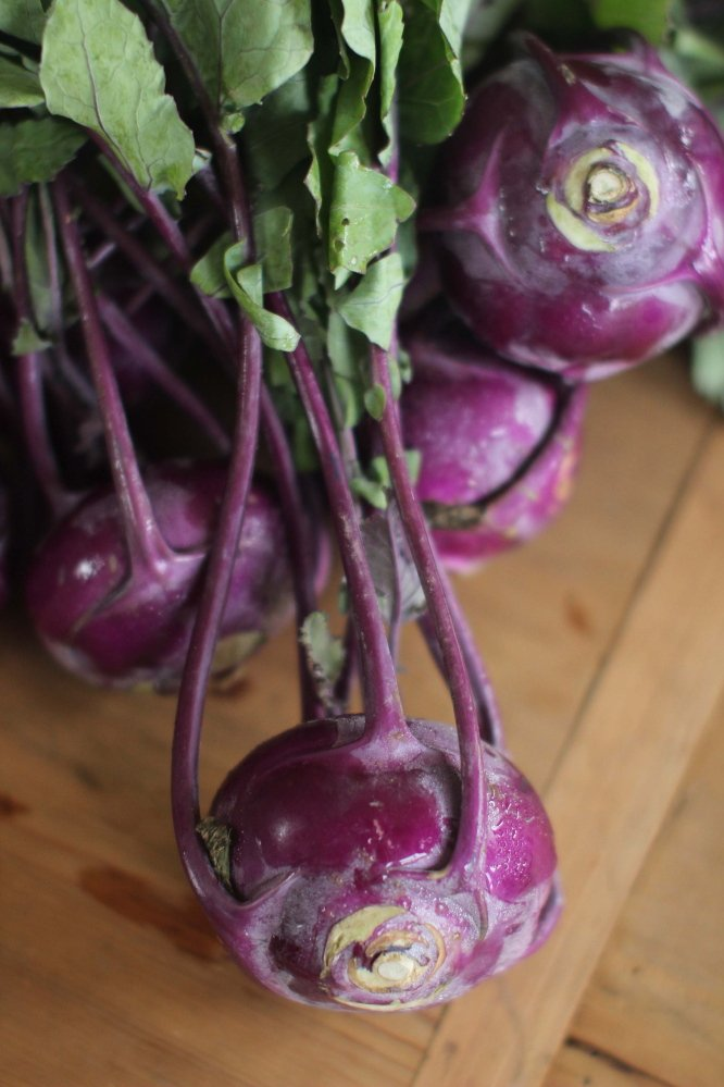 Kohlrabi is a member of the brassica family; its relatives include broccoli, cauliflower, turnips and kale.