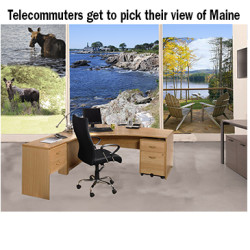 edit_telecommuter-views