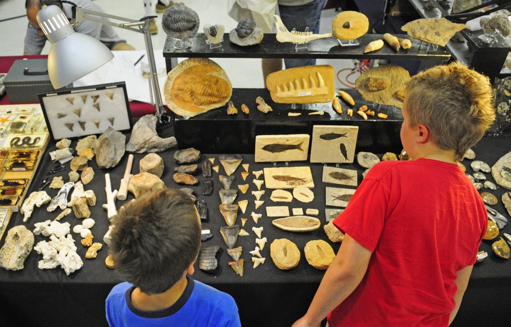 Staff photo by Joe Phelan Brothers Seth Nichols, 6, left, and Nolan Nichols, 10, both of Gardiner, look at sharks' teeth and fossils Saturday during the Rockhounders 26th Annual Gem and Mineral Show at the Augusta State Armory.
