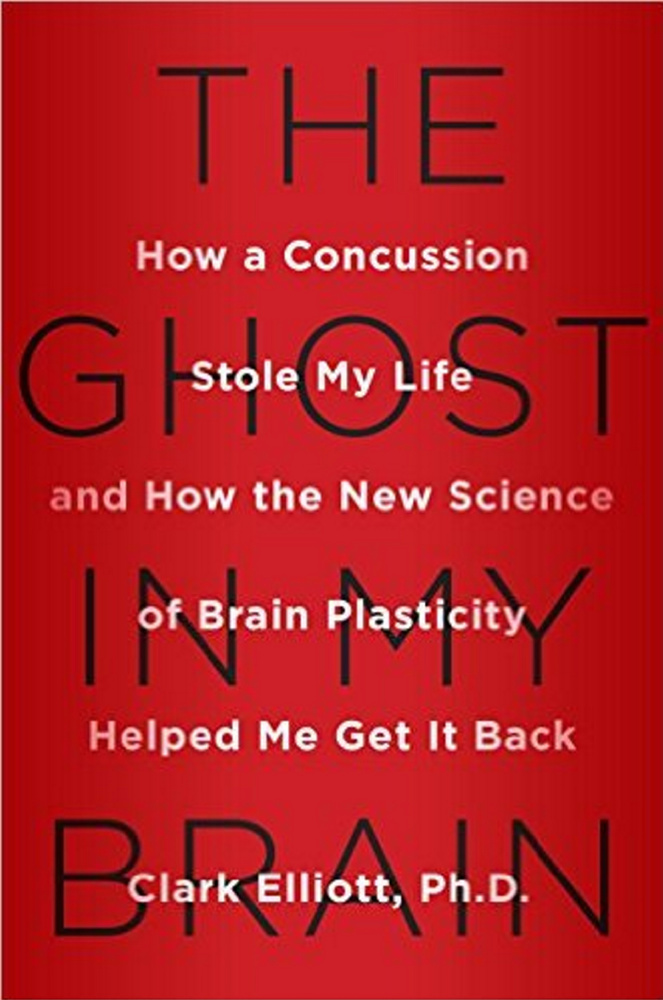 """The Ghost in My Brain,"" a book by a DePaul University professor about recovery from a brain injury has given Skowhegan lawyer Dale Thistle hope that he can recover from a similar injury. Thistle's right to practice law was suspended by the Maine Supreme Judicial Court after he suffered a brain injury in a car accident."