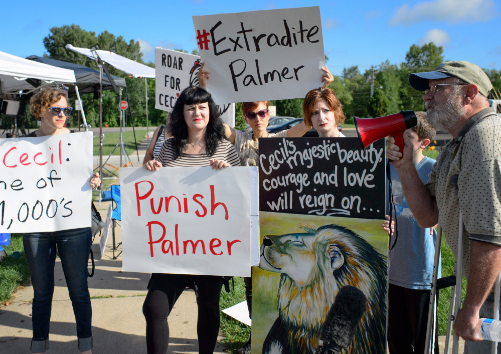 "Demonstrators gather outside the office of Walter Palmer, who returned to his dental practice on Tuesday, in Bloomington, Minn. ""We want him to know that we're not going to forget,"" said one, referring to Palmer's killing of Cecil, a treasured lion in Zimbabwe."
