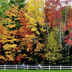 "The fall foliage was out in force as Marie Mallet, left, and Meghan Southworth bike along a trail at the Field of Dreams complex in Unity on Sunday. Far northern Maine just hit ""peak foliage"" with 75 percent to 100 percent of trees in full fall regalia last weekend, which is two weeks behind last year and one to two weeks later than normal, according to the Maine Department of Agriculture, Conservation and Forestry's fall foliage website."