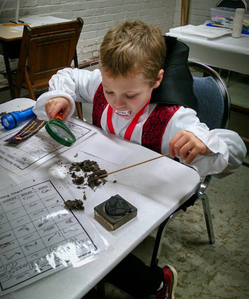 A young Dracula dissects an owl pellet.