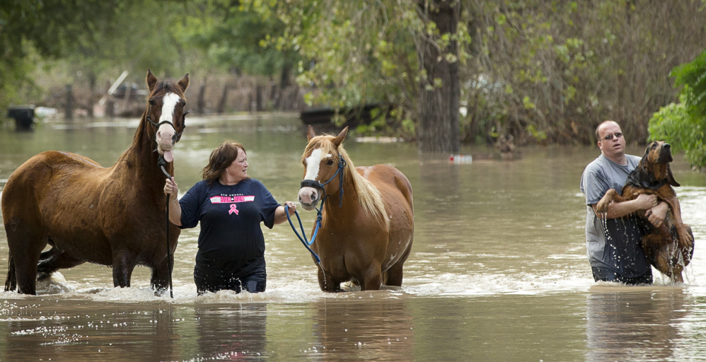 Rhonda Burnett walks her horses through flood waters while Lee Hays helps a neighbor's dog in Garfield, Texas, Saturday as storms continue to pummel the state.
