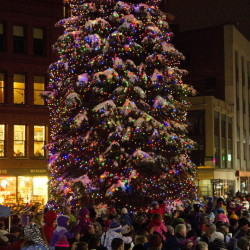 Portland's holiday tree is lit up in Monument Square in this Nov. 28, 2014, photo.