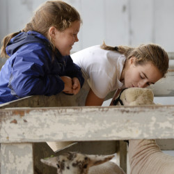 CUMBERLAND, ME - SEPTEMBER 30: Thirteen-year-old Natalie Domin spends a moment with her lamb Buddy shortly before the auction at the Cumberland Fair Wednesday, September 30, 2015. Looking on is Rachel Wiest of Freeport. (Photo by Shawn Patrick Ouellette/Staff Photographer)