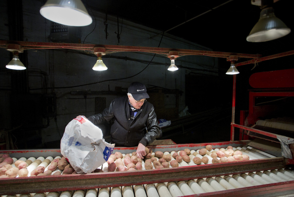 """Farmer Stew Smith sifts through potatoes at his Newport potato processing plant. Maine's food and beverage industry has """"clear growth potential"""" that would benefit from a coordinated plan of action, a new report says."""