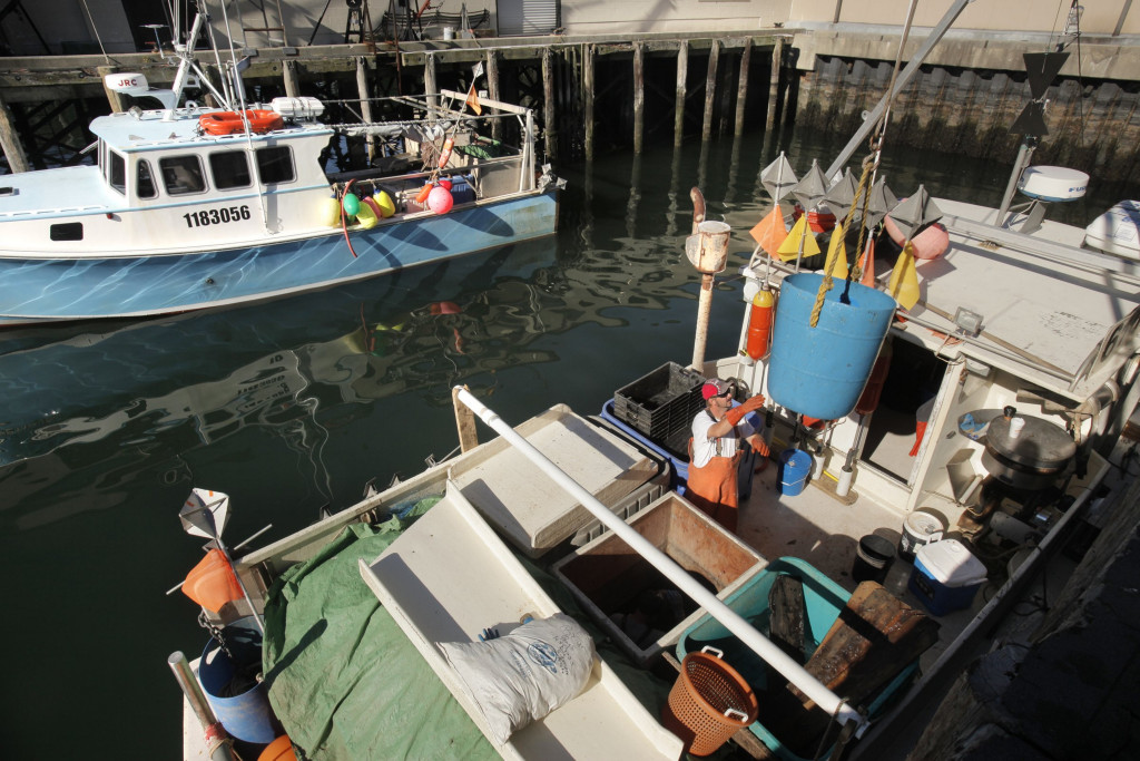 Fish are off-loaded from a boat at the Portland Fish Pier. New England fishermen may soon have to bear the cost of a monitoring program.  Gregory Rec/2010 Press Herald file