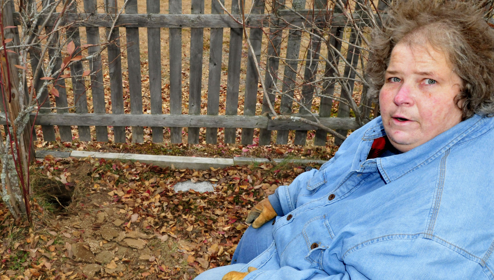 Sue Willumson beside a hole in ground in her back yard skunks dug up a bees nest at her Skowhegan home on Wednesday.
