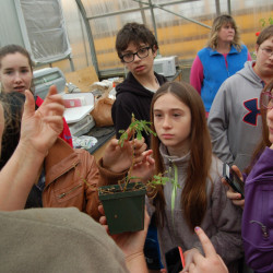 Mallaney Bollenbacher, Good Will-Hinckley Greenhouse manager, foreground, left, talks with Kaitlyn Vigue, Julian Landry, Abby Dorval, Ben Lamontagne, Airel Delong and Kody King. Patty Brown is in the background.