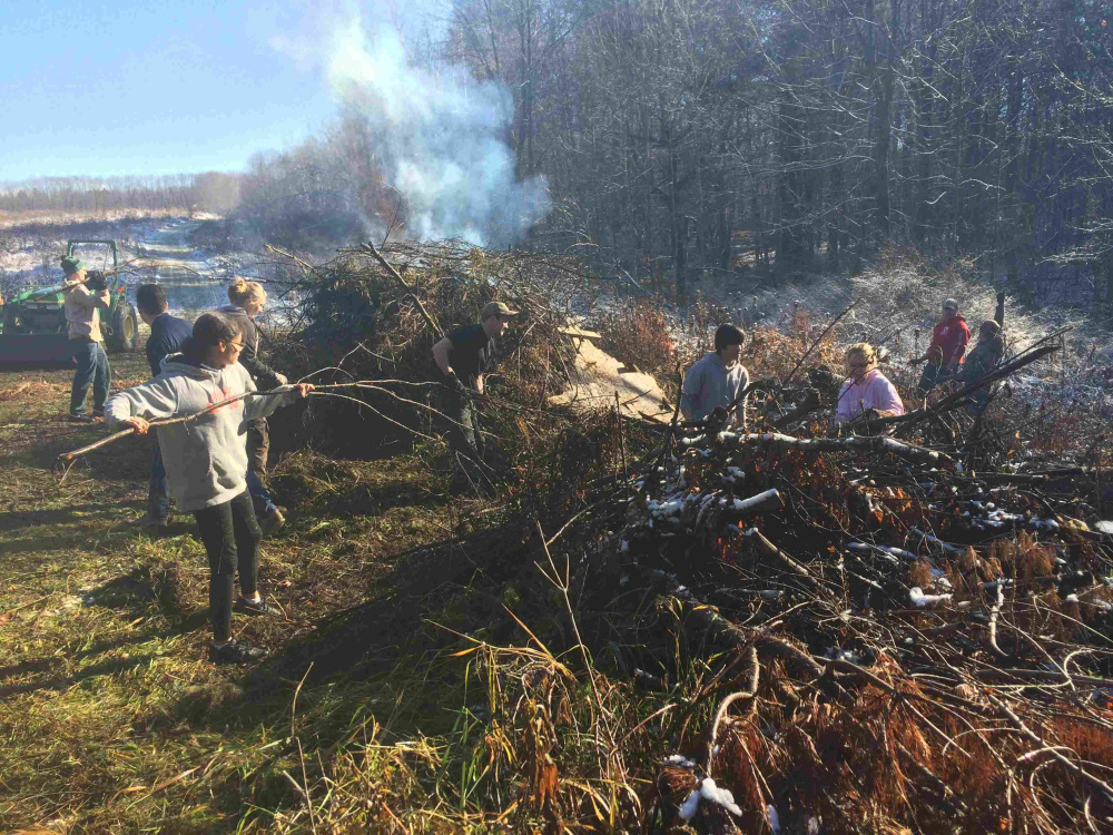 The Air Force volunteers piled brush recently at the Viles Arboretum in Augusta.