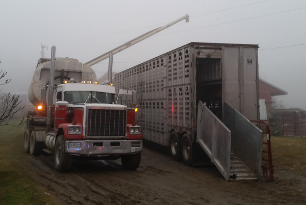 The driver of a grain truck, left, suffered an electric shock and was taken to the hospital after the boom on the truck struck high-tension wires while he was unloading grain at Shady Lane Farm in New Vineyard Wednesday.