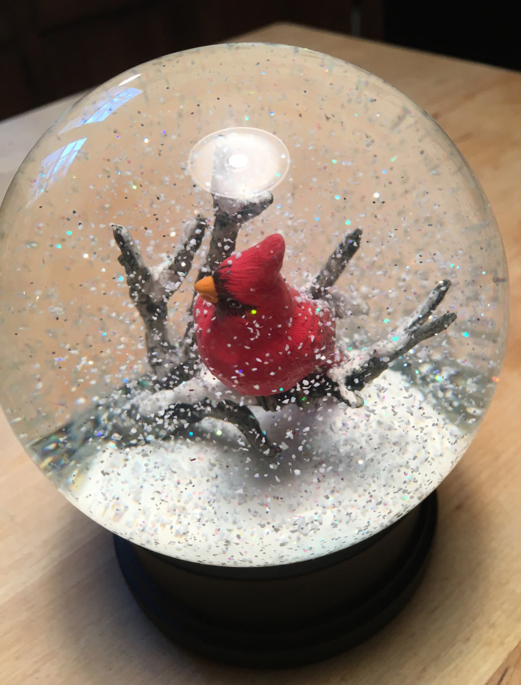 J.P. Devine's cardinal snow globe is the latest in an obsession that goes back to childhood.