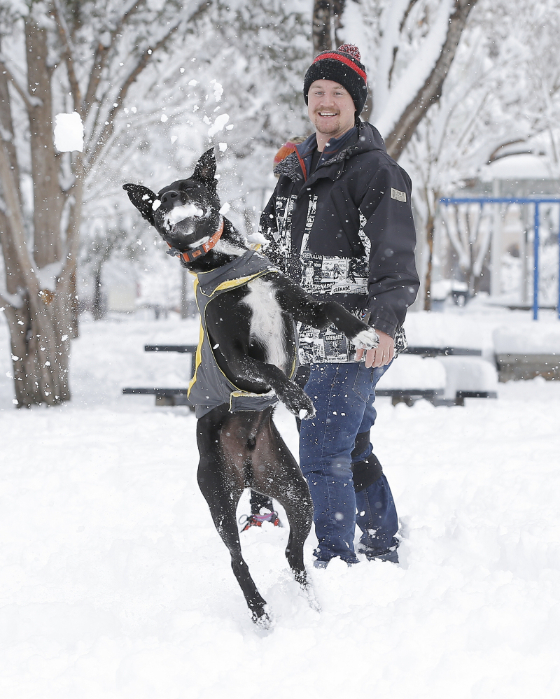 Miles Overstreet throws snowballs to his dog Ferris as they play at Madeline Park in the Kern Place neighborhood of El Paso, Texas, Sunday, Dec. 27, 2015. A heavy snowfall created a winter playground for El Pasoans after several inches remained from an overnight storm.