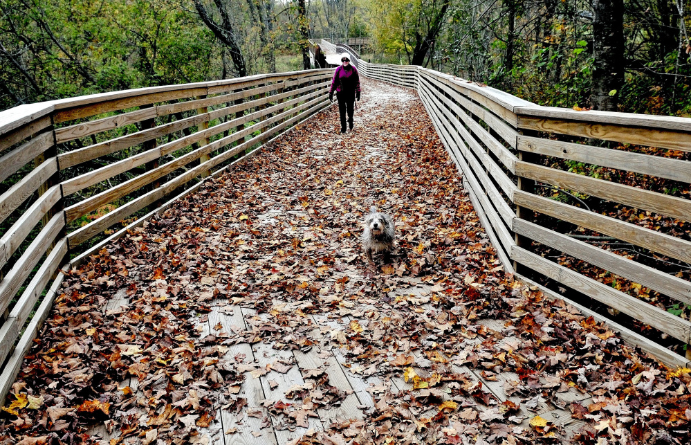 Keeper the dog charges across the leaf-covered walking bridge over Sandy Stream in Unity last year as Michele Leavitt, wife of Stephen Mulkey, president of Unity College at the time, used the popular trail that connects the campus and downtown Unity. Recreational trails building is one of the uses targeted for tax increment financing money in town.