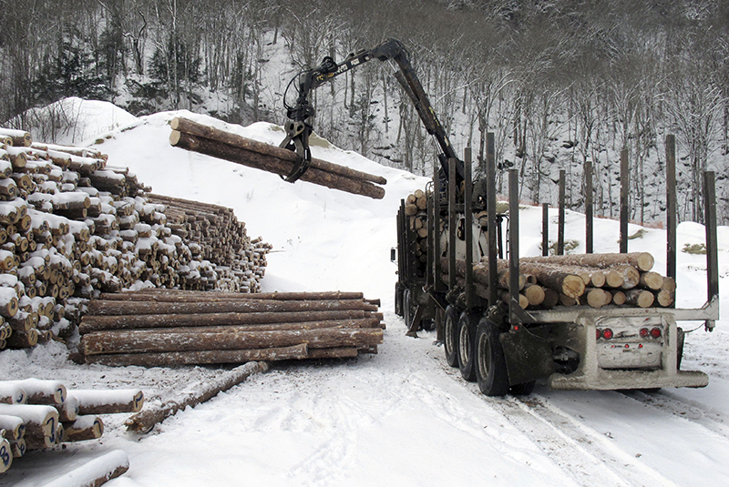 Logs destined for a mill are unloaded on Jan. 20 at a wood yard in Vermont.
