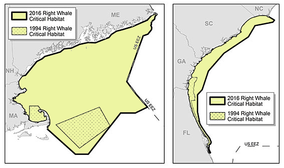 Under the new NOAA policy, critical habitat for feeding expands from 2,925 to 21,334 nautical miles in the Northeast, shown at left, and critical habitat for calving  expands from 1,611 to 8,429 nautical miles in the Southeast.