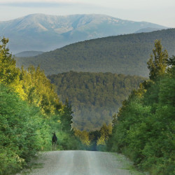 Could the 75,000-acre parcel east of Baxter State Park be designated as a national monument? Since 1906, presidents from both parties have used the Antiquities Act to protect 145 similar sites.