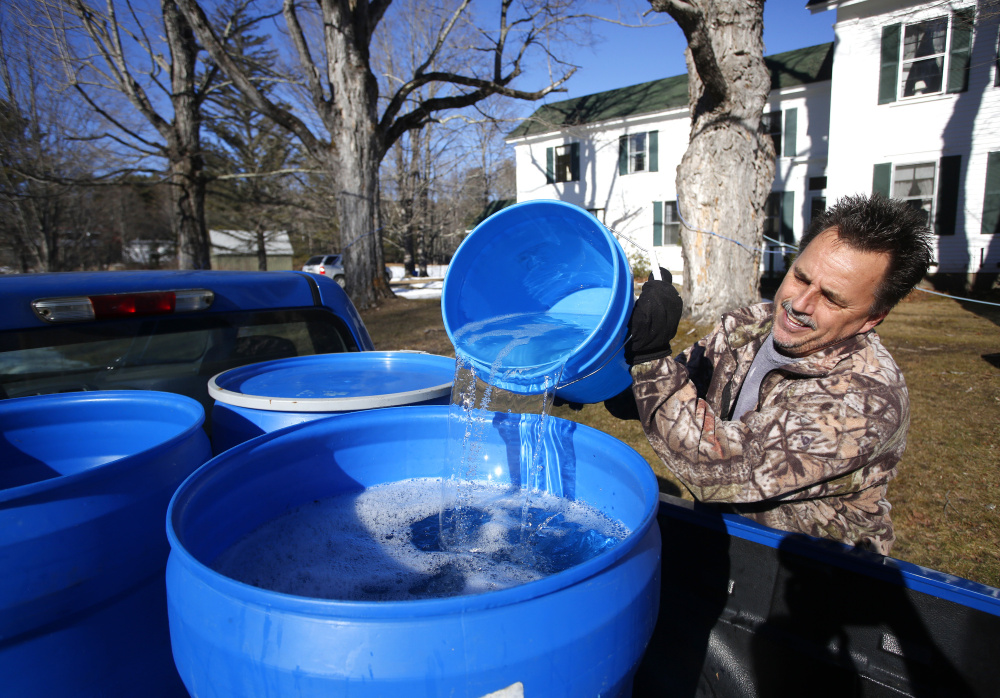 """Jeff Berry of Waterboro fills 30-gallon buckets in the bed of his truck Tuesday after collecting sap in Buxton. Berry, who described this year's flow as """"real early,"""" started tapping maple trees with his partner on Jan. 27. They've already collected 1,000 gallons of sap that they planned to start boiling Wednesday."""