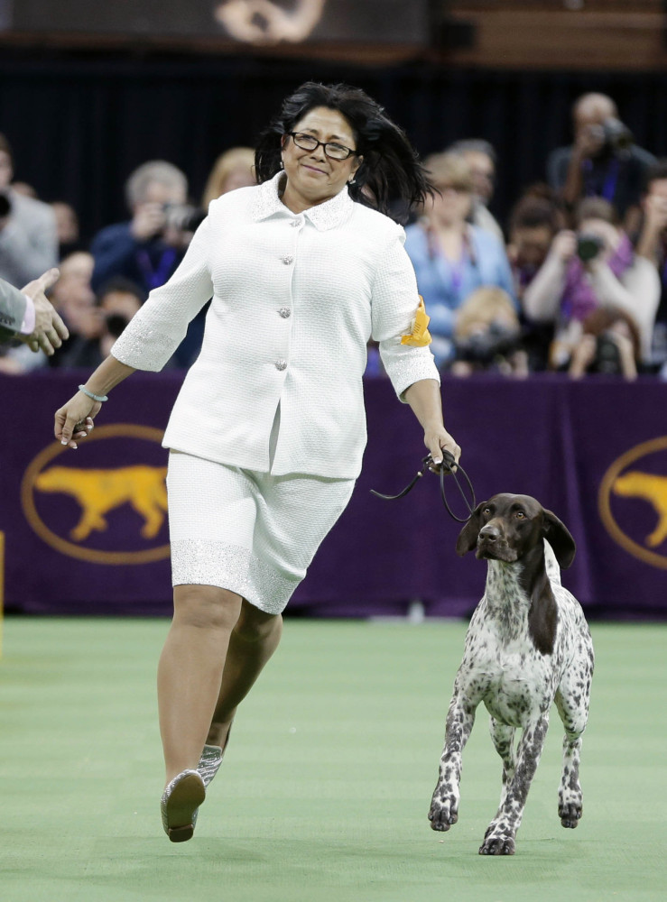 CJ, a German shorthaired pointer, and Valerie Nunes-Atkinson react after winning the sporting group competition during the 140th Westminster Kennel Club dog show, Tuesday, Feb. 16, 2016, at Madison Square Garden in New York. (AP Photo/Seth Wenig)