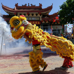 Performers dance in Chinese Lion costume in celebration of the Chinese and Vietnamese Lunar New Year outside the Thien Hau Temple in the Chinatown district of Los Angeles this week. Feng shui experts in China and elsewhere are unveiling their forecasts for the year, and the outlook may not bode well for people's personal finances.