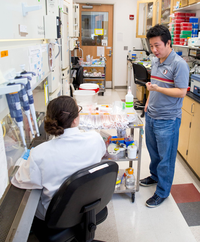 Professor Hengli Tang confers with his graduate student and co-author Sarah Ogden about the next steps in their Zika virus research in Tang's lab at Florida State University in Tallahassee, Fla. Tang is a lead author of a lab study that found the Zika virus infects embryonic cells that help form the brain, adding to evidence that Zika causes a serious birth defect.