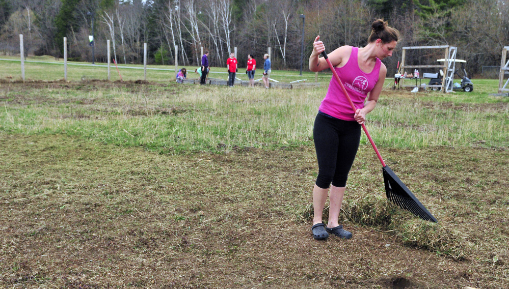 Erika King rakes up after another volunteer ran a string trimmer over the plot Friday at the University of Maine at Augusta garden.