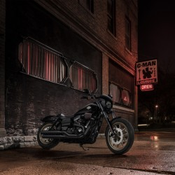 Harley-Davidson has added a new Sportster-style motorcycle, The Roadster, a 1200-cc V-Twin, to its lineup.