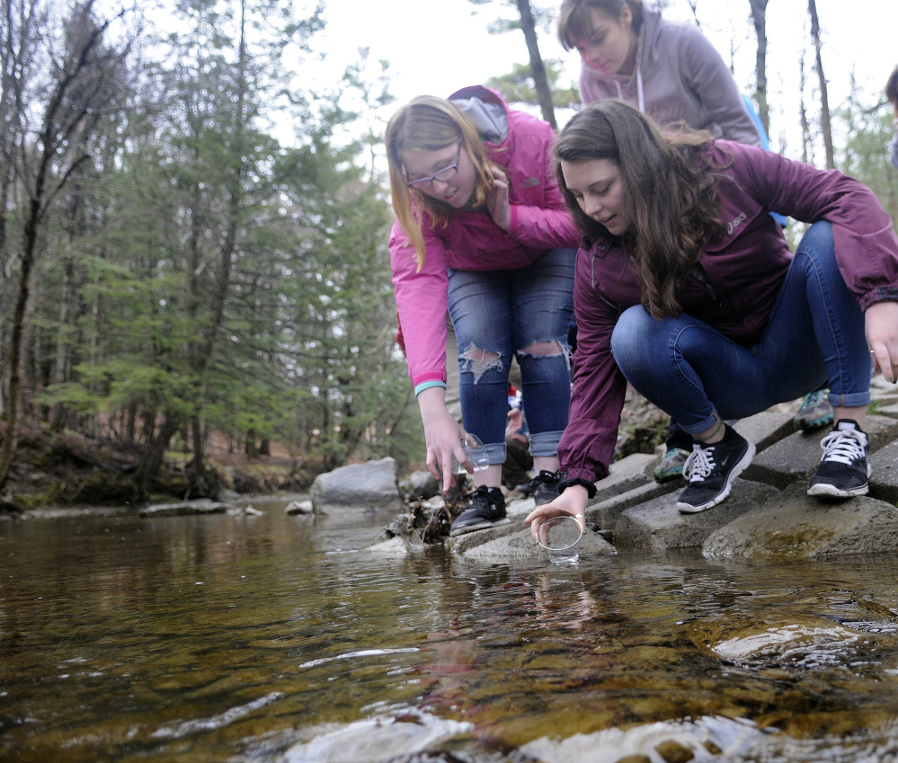 Messalonskee High School students Serena Collins, right, Elizabeth Newman, center, and Mariah Bernard release Atlantic salmon alevin on Monday into Bond Brook in Augusta.