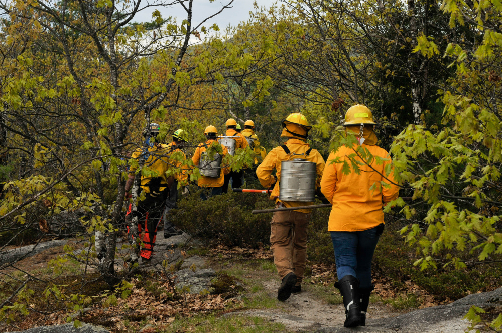 People at the summit of French Mountain in Rome head into the trees to help extinguish a forest fire Thursday.
