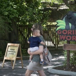 A visitor with a small child passes outside the shuttered Gorilla World exhibit at the Cincinnati Zoo & Botanical Garden, Sunday, May 29, in Cincinnati.
