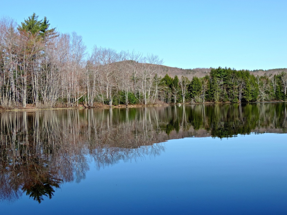 Ridges above the treeline at True's Pond in Montville provide beautiful scenery to go with the abundance of wildlife on the oddly shaped pond.